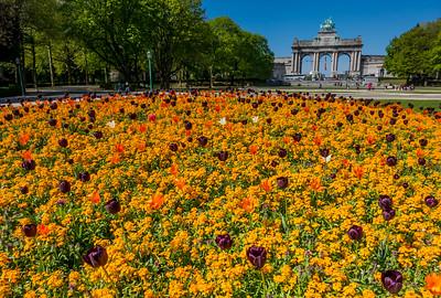Garden, Brussels, Belgium