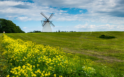 Windmill, Vihula, Estonia