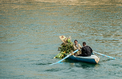 Rowing on the Nile River, Egypt
