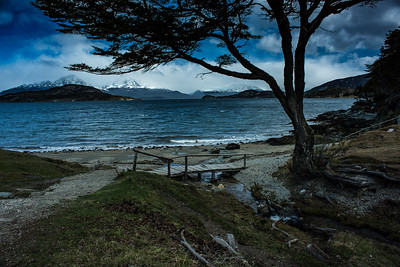 Hiking path along the Beagle Strait, Tierra del Fuego, Argentina