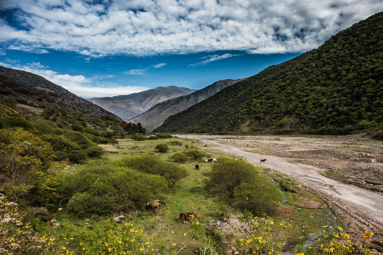 Dry riverbed salta argentina