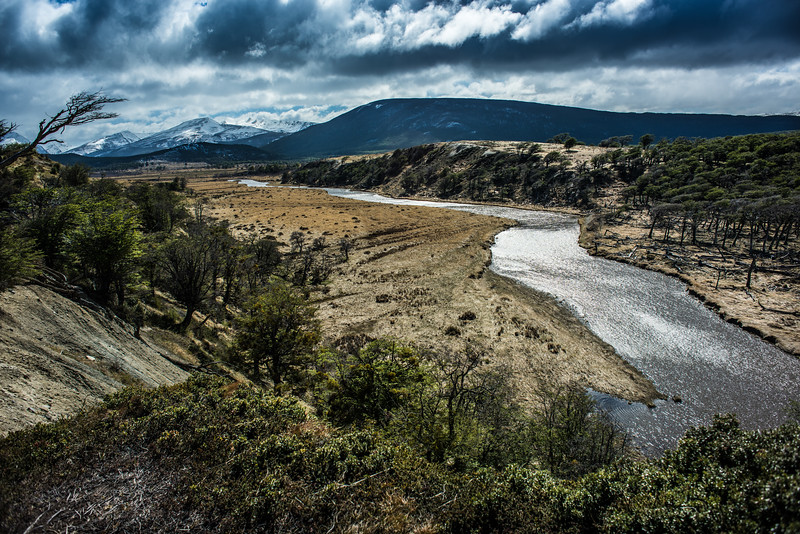 Bent Trees and the River, Harberton Farm, Tierra del Fuego