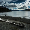 The shore of the Beagle Strait, Tierra del Fuego
