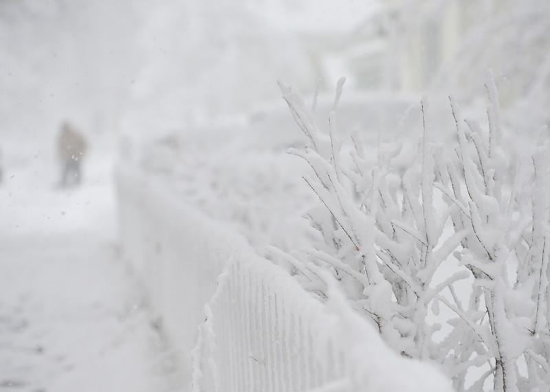 SNOW162