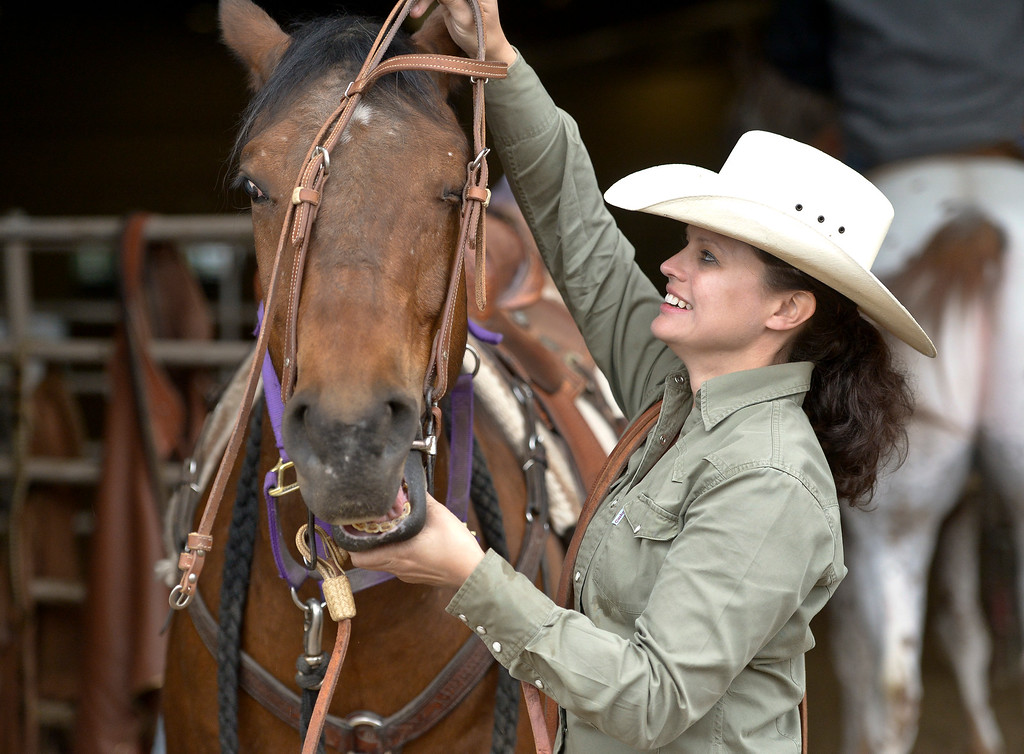 . Rondi Bobbin, of Durango, puts a bridle on 10-year-old Smarty at the Mountain & Plains Appaloosa Horse Club\'s Spring Classic Horse Show Sunday at the Boulder County Fairgrounds. The event, which started Friday, had more than 50 horses entered. Competitors traveled from Nebraska, New Mexico, Arizona as well as western Colorado and the Longmont area. The Mountain & Plains Appaloosa Horse Club will be hosting another show at the fairgrounds in September. To view more photos visit timescall.com. Lewis Geyer/Staff Photographer May 13, 2018