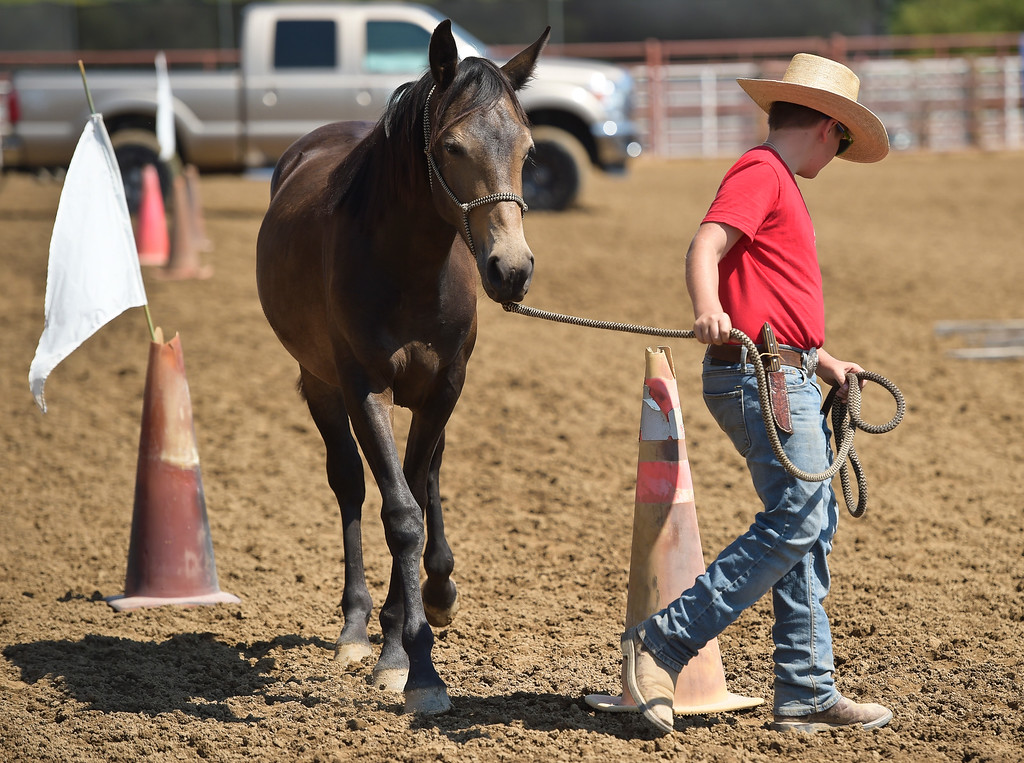 . Spirits of the West 4-H club member Preston Sander-Ferracane, 12, walks Olive through an obstacle course during the mustang shocase at the Boulder County Fair Tuesday. To view more photos and a video visit timescall.com. Lewis Geyer/Staff Photographer August 01, 2017