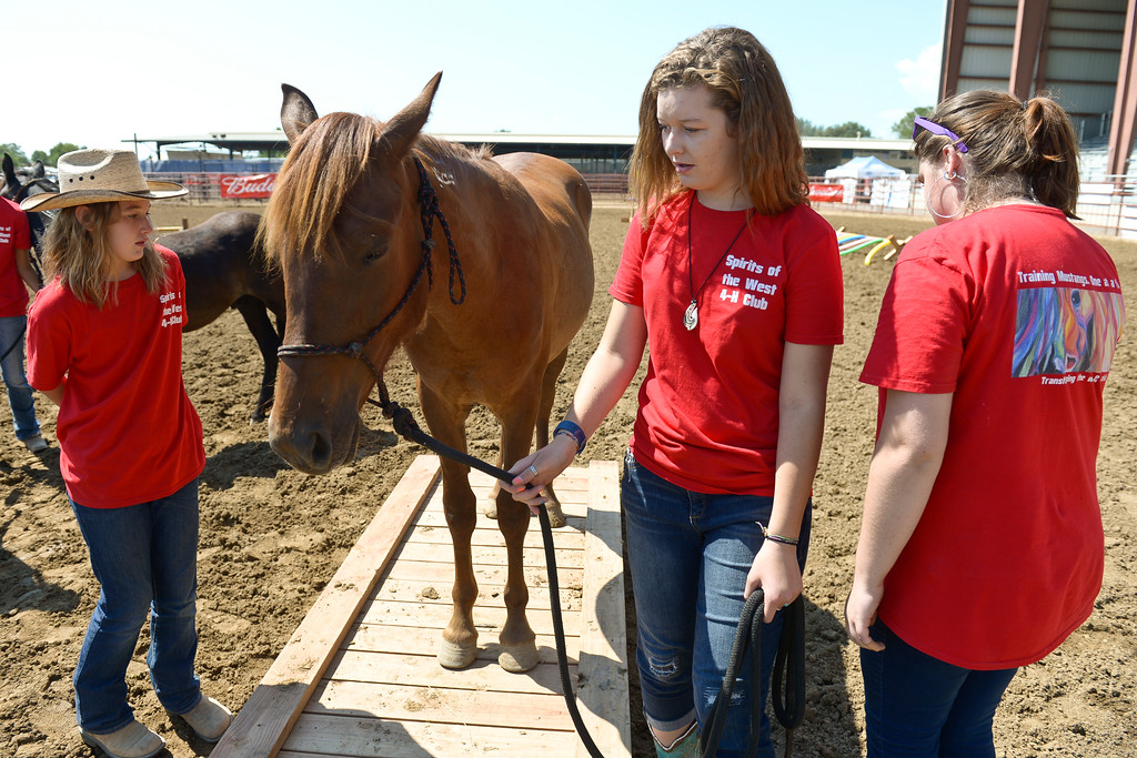 ". Spirits of the West 4-H club member Rayna Roberts, 15, leads Azteca across a ""bridge\"" before a mustang showcase at the Boulder County Fair Tuesday. To view more photos and a video visit timescall.com. Lewis Geyer/Staff Photographer August 01, 2017"