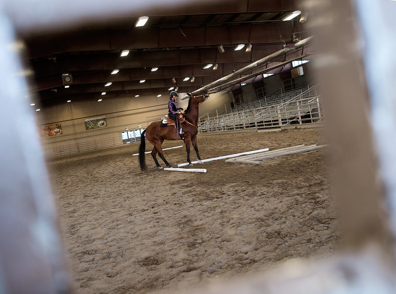 "Lily Thomas, 11, competes in a trail class with her Quarter Horse, Tulo, during the POA Futurity and Open Horse Show at the Boulder County Fairgrounds in Longmont on Sunday.<br /> More photos:  <a href=""http://www.dailycamera.com"">http://www.dailycamera.com</a><br /> (Autumn Parry/Staff Photographer)<br /> August 28, 2016"