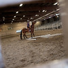 """Lily Thomas, 11, competes in a trail class with her Quarter Horse, Tulo, during the POA Futurity and Open Horse Show at the Boulder County Fairgrounds in Longmont on Sunday.<br /> More photos:  <a href=""""http://www.dailycamera.com"""">http://www.dailycamera.com</a><br /> (Autumn Parry/Staff Photographer)<br /> August 28, 2016"""