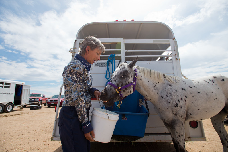 "Pam Klein gives her pony, Dream, some water prior to warming-up for a class with the POA Futurity and Open Horse Show at the Boulder County Fairgrounds in Longmont on Sunday.<br /> More photos:  <a href=""http://www.dailycamera.com"">http://www.dailycamera.com</a><br /> (Autumn Parry/Staff Photographer)<br /> August 28, 2016"