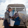 """Pam Klein gives her pony, Dream, some water prior to warming-up for a class with the POA Futurity and Open Horse Show at the Boulder County Fairgrounds in Longmont on Sunday.<br /> More photos:  <a href=""""http://www.dailycamera.com"""">http://www.dailycamera.com</a><br /> (Autumn Parry/Staff Photographer)<br /> August 28, 2016"""