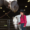 """Mya Keller, 10, waits with her pony, Impressive Kid, prior to the trail class during the POA Futurity and Open Horse Show at the Boulder County Fairgrounds in Longmont on Sunday.<br /> More photos:  <a href=""""http://www.dailycamera.com"""">http://www.dailycamera.com</a><br /> (Autumn Parry/Staff Photographer)<br /> August 28, 2016"""