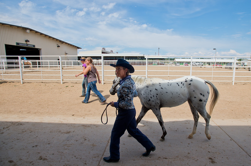 "Pam Klein walks her pony, Dream, to the arena for the POA Futurity and Open Horse Show at the Boulder County Fairgrounds in Longmont on Sunday.<br /> More photos:  <a href=""http://www.dailycamera.com"">http://www.dailycamera.com</a><br /> (Autumn Parry/Staff Photographer)<br /> August 28, 2016"