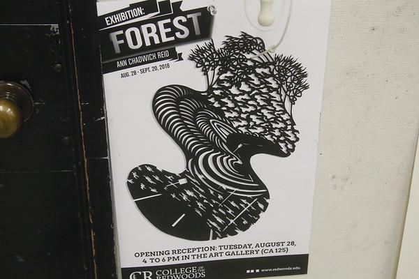 Photos: Paper cut art workshop at CR