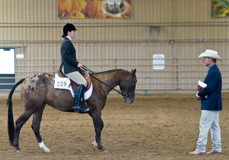 PONY OF THE AMERICAS HORSE SHOW