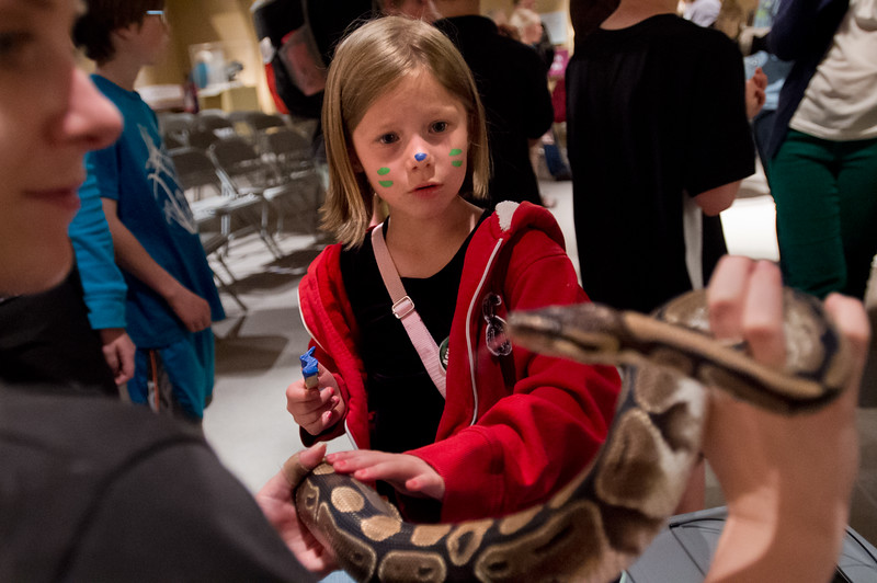 "Sophia Terry, 7, pets an African Ball Python named Cleopatra during ""Raptor's with Nature's Educators"" as part of the 15th Annual Wild Earth Day at the University of Colorado's Museum of Natural History on Sunday. <br /> More photos:  <a href=""http://www.dailycamera.com"">http://www.dailycamera.com</a><br /> Autumn Parry/Staff Photographer<br /> April 24, 2016"