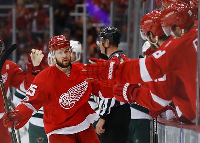 Wild Red Wings Hockey