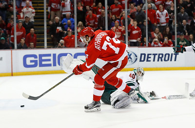 Wild Red Wings Hockey