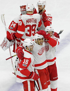 Red Wings Hurricanes Hockey