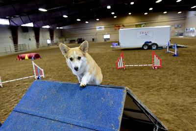 Photos: Rental Fees at Fairgrounds Facilities May Increase