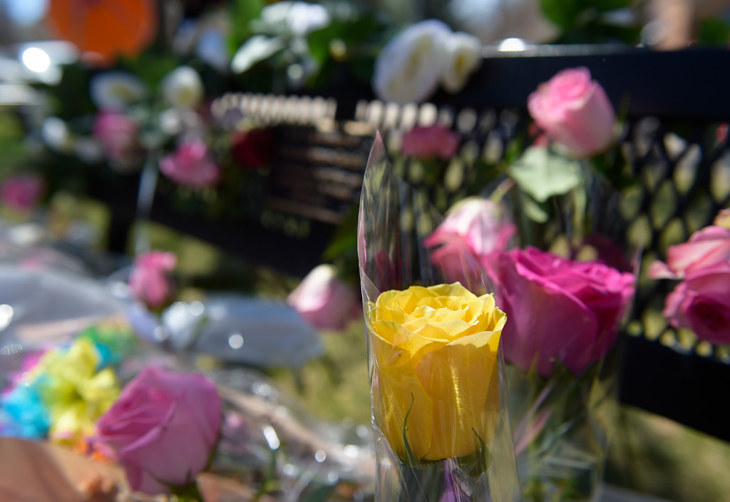 . LONGMONT, CO - APRIL 7: Roses adorn the Rita Gutierrez-Garcia memorial bench for its dedication April 7, 2019 at Thompson Park. Gutierrez-Garcia disappeared over a year ago. To view more photos visit timescall.com. (Photo by Lewis Geyer/Staff Photographer)