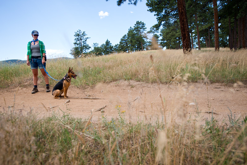 """Amber Erickson Gabbey stands with her dog Moxie as they take a brief break during the search for Geno on the Canyon Loop in the Betasso Preserve on Saturday. Geno, a St. Bernard belonging to Charlie and Bretlyn Schmidtmann, went missing during the Cold Springs Fire. <br /> More photos:  <a href=""""http://www.dailycamera.com"""">http://www.dailycamera.com</a><br /> (Autumn Parry/Staff Photographer)<br /> July 23, 2016"""