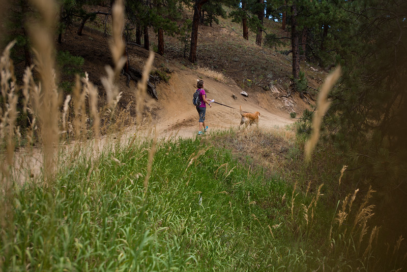 """Kat Barr walks with Clyde through Canyon Loop on Saturday in Betasso Preserve as they search for Geno, a St. Bernard belonging to Charlie and Bretlyn Schmidtmann, who went missing during the Cold Springs Fire. <br /> More photos:  <a href=""""http://www.dailycamera.com"""">http://www.dailycamera.com</a><br /> (Autumn Parry/Staff Photographer)<br /> July 23, 2016"""