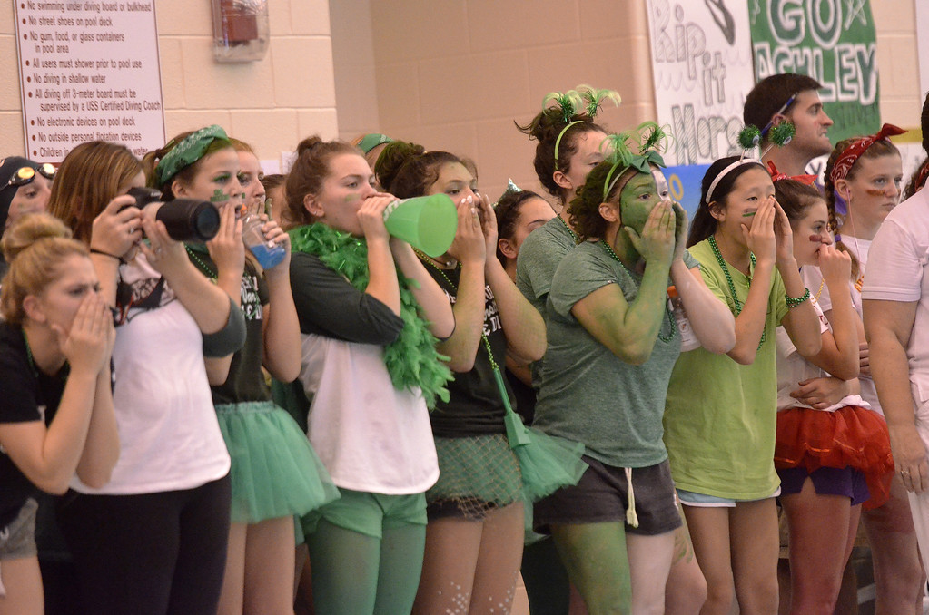 . Members of the Shenendehowa girls swimming and diving team cheer on their teammates during the 200-yard individual medley Saturday afternoon during the Division I championships.