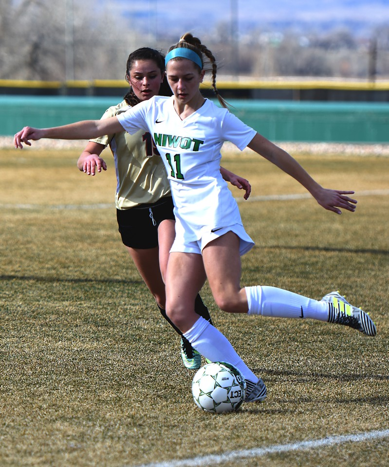 Niwot's Roxie Pasma looks to pass during the Cougars' game against Skyline on Tuesday in Niwot.