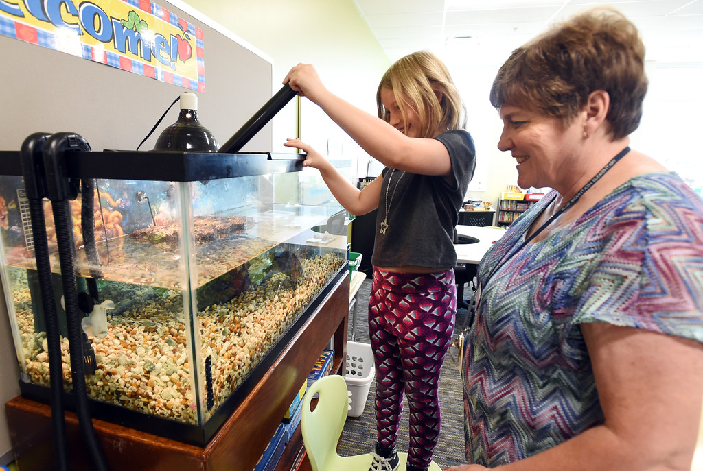 . Qwen Kuntz feeds the turtles with help from teacher, Teddy Hampton,  at Blue Mountain Elementary in Longmont, during the first day of school in the St. Vrain Valley School District on Tuesday. For more photos, go to dailycamera.com.  Cliff Grassmick  Staff Photographer August 15, 2017