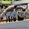 gymnastics_AW14