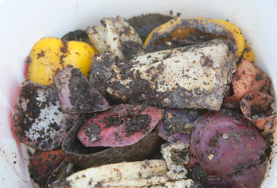 Compostable items get mixed into compost in a demonstration bucket. (Shaun Walker -- The Times-Standard)