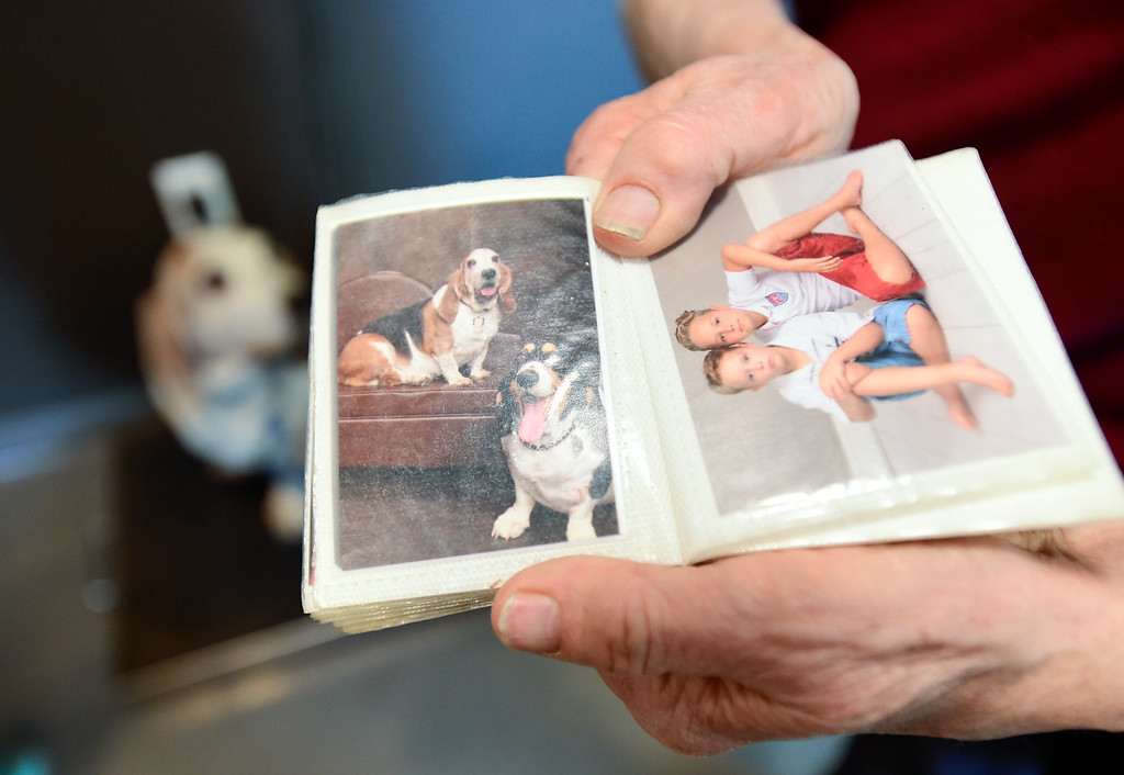. Sue Peterson, owner of Baxter, a blind, diabetic basset hound, shows off pictures of her dogs while in an exam room at the Well Pet Clinic at the Longmont Humane Society on Wednesday. More photos: TimesCall.com. Matthew Jonas/Staff Photographer Feb. 15, 2017