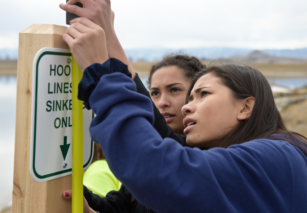 . LONGMONT CO - MARCH 19: Westview Middle School seventh graders Kianga Hoover, center, and Nayeli Ortiz measure the depth of a cedar post they were installing for a fishing line collection tube at Lagerman Reservoir March 19, 2019. A total of three collection tubes will be along the north shore. To view more photos visit timescall.com. (Photo by Lewis Geyer/Staff Photographer)