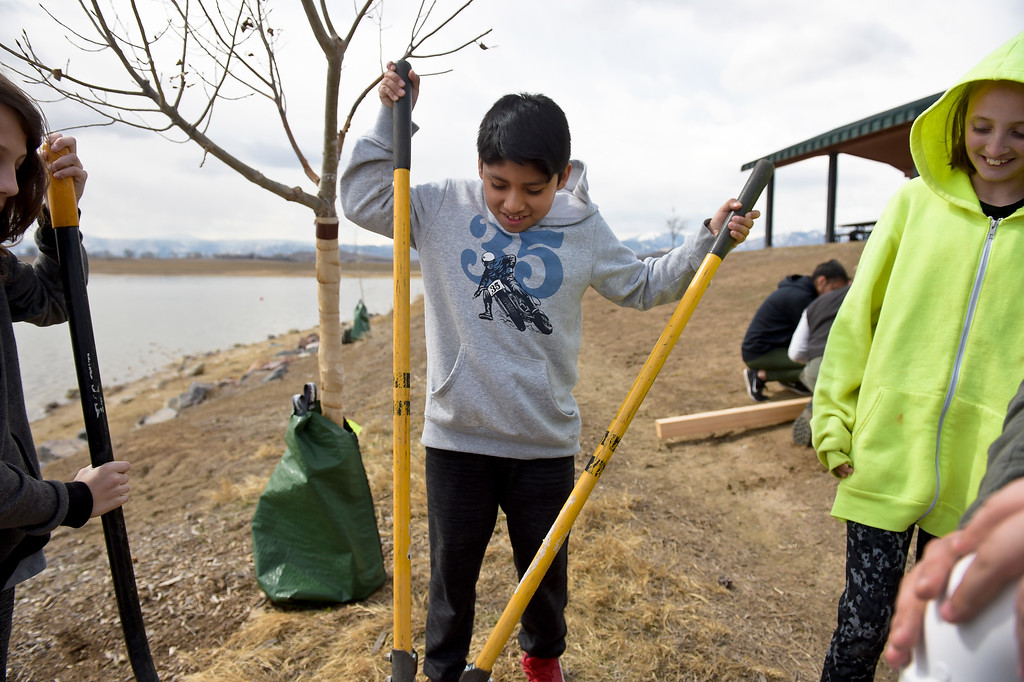 . LONGMONT CO - MARCH 19: Westview Middle School sixth grader Dylan Cunyas uses a post hole digger to help install a fishing line  collection tube at Lagerman Reservoir March 19, 2019. A total of three collection tubes will be along the north shore. To view more photos visit timescall.com. (Photo by Lewis Geyer/Staff Photographer)