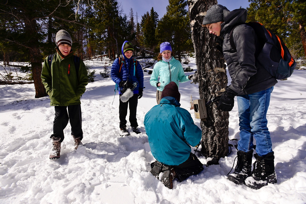 . From left: Dylan Tusinski,  Zach Heil and Sierra Bindseil work to attach a camera to a tree at Rocky Mountain National Park as Dominic Warner and Ezra Fehlberg look on, on Wednesday. More photos: TimesCall.com. Matthew Jonas/Staff Photographer March 1,  2017