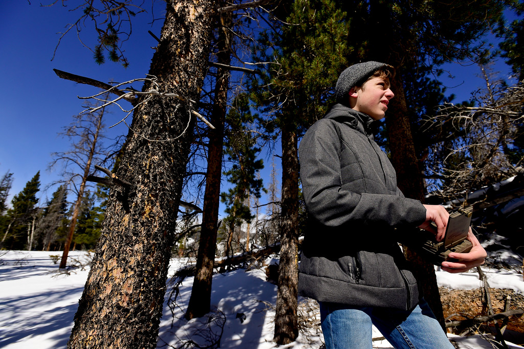 . Skyline High School student Dylan Tusinski, 15, checks a game camera with students from Westview Middle School at Rocky Mountain National Park on Wednesday. More photos: TimesCall.com. Matthew Jonas/Staff Photographer March 1,  2017
