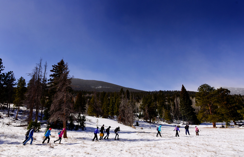 . Students from Westview Middle School along with teachers and former students hike to find game cameras that they placed at Rocky Mountain National Park for a research project on Wednesday. More photos: TimesCall.com. Matthew Jonas/Staff Photographer March 1,  2017