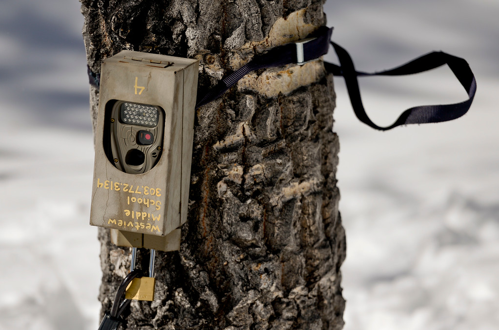 . A Westview Middle School game camera is seen on a tree at Rocky Mountain National Park on Wednesday. More photos: TimesCall.com. Matthew Jonas/Staff Photographer March 1,  2017