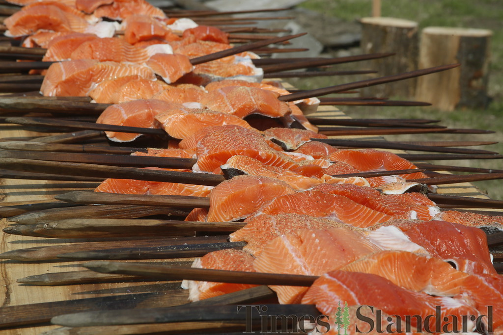 . Shaun Walker � The Times-Standard  Fresh local wild Chinook salmon sits skewered on redwood stakes and ready to cook at Wiyot Day 2018 on Saturday. The Wiyot Tribe hosts the event annually to provide an opportunity for the community to come together and celebrate Wiyot culture, and honor elders and veterans. The event was held at Table Bluff Reservation in Loleta and featured dance and cultural demonstrations, a stick game, card game tournament,  salmon dinner, live music, games for kids, and vendors.