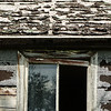 124  Homestead remnants