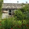 85  Old cabin on Gottlob Schmidt's (Schmitty's) land
