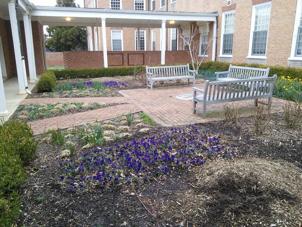 Benjamin Courtyard Garden