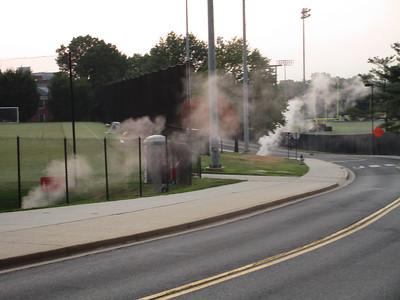 Steam damaged trees, August 18, 2015