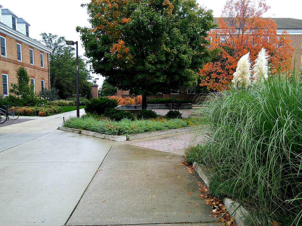 Tawes Plaza Gardens