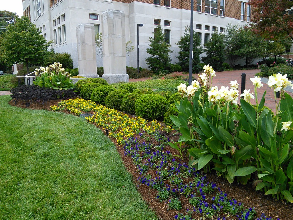 Van Munching Hall Clock Tower Landscape Plantings