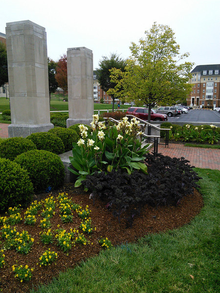 Clock Tower Landscape Plantings