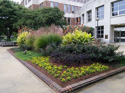 Van Munching Courtyard 2014/10/10