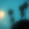 Los Angeles - a rainy night