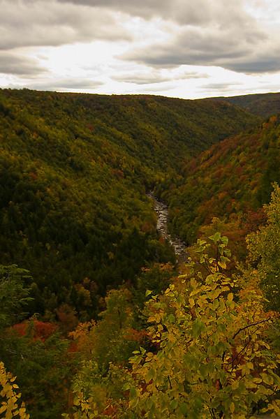 2008 October Fall Foliage Tour